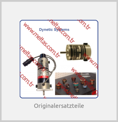 Dynetıc Systems