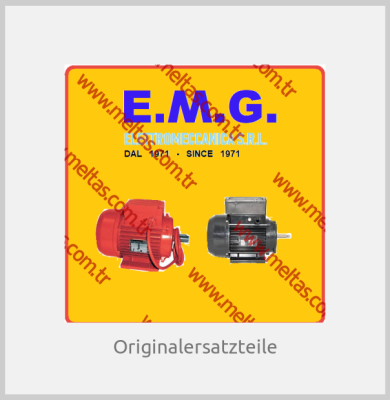 E. M. G. Elettromeccanica