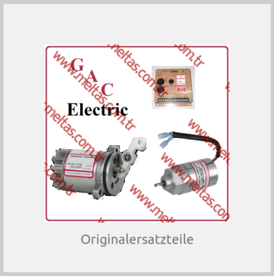 GAC Electric
