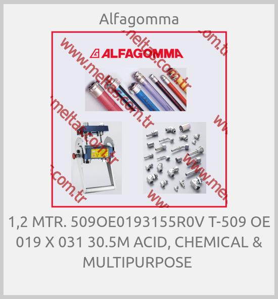 Alfagomma - 1,2 MTR. 509OE0193155R0V T-509 OE 019 X 031 30.5M ACID, CHEMICAL & MULTIPURPOSE
